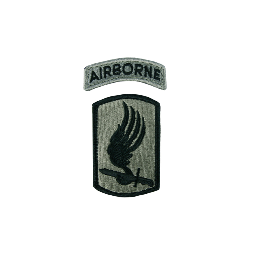 미국 제173공수여단